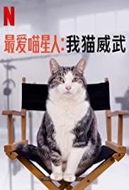 ดูสารคดี Kitty Love: An Homage to Cats (2021) ความรักแมวๆ แด่น้องเหมียว