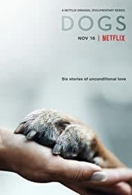ดูซีรี่ย์ Dogs: Season 2 (2021) เพื่อนแท้สี่ขา